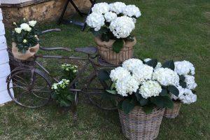 adornos y decoración de jardín en León - Jardinería Magal