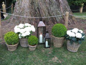 decoración de jardín en León - Jardinería Magal