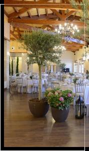 decoración floral de salon en León - Jardinería Magal