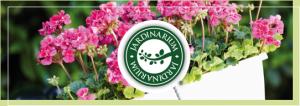 jardinarium - Jardinería Magal