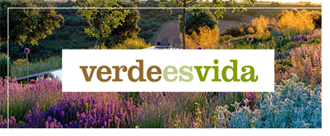 verde es vida en León - Jardinería Magal