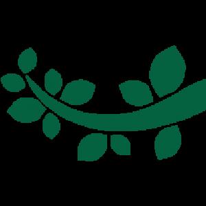 Jardinería Magal en León