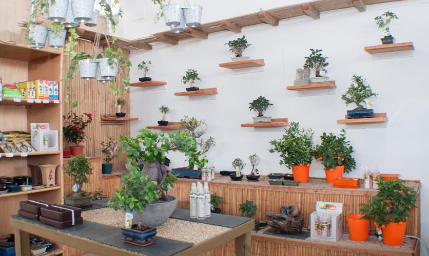Empresa de jardiner a y viveros en le n jardiner a magal - Centros de jardineria madrid ...