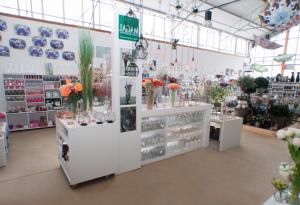 centro de jardinería en León - Jardinería Magal