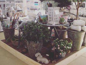 decoración floral de jardín en León - Jardinería Magal