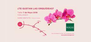 taller gratuito de orquídeas en león - Jardinería Magal