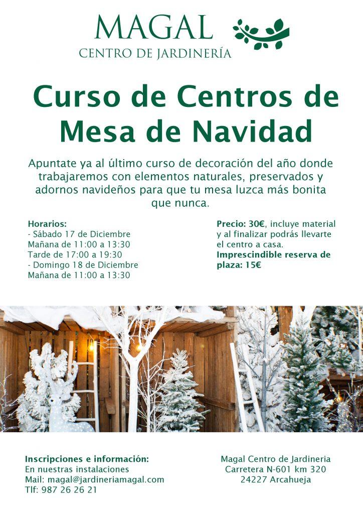 curso-centro-de-mesa-navidad-en-leon-jardineria-magal
